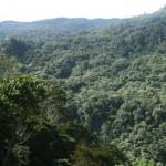 09.07.01 – Kokoda 467